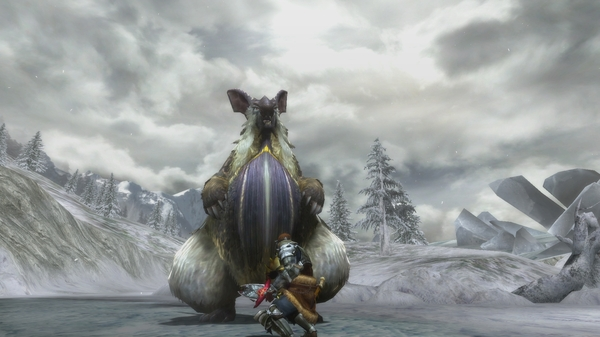 monster hunter 3 ultimate pic 1 (2)
