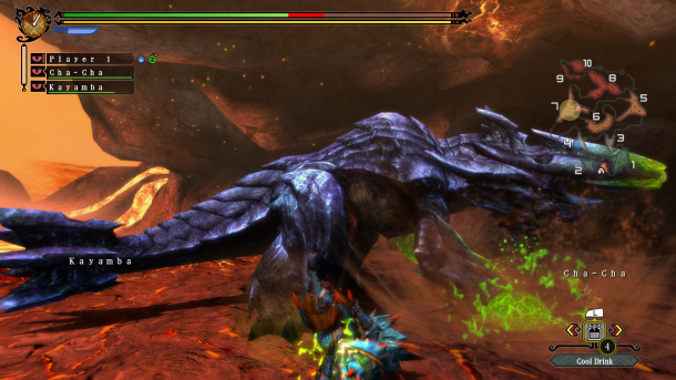 Monster Hunter 3 Tri Wii U Screenshot (1)