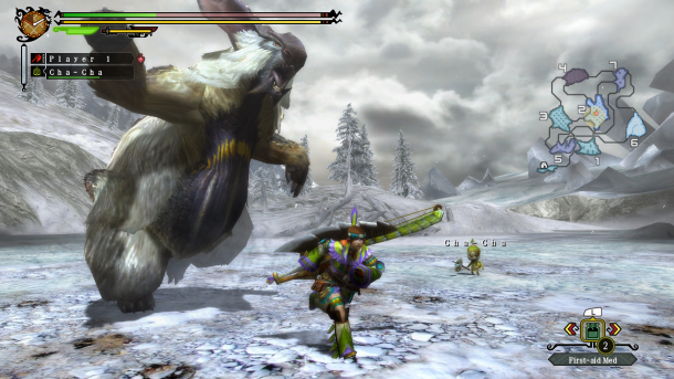 Monster Hunter 3 Tri Wii U Screenshot (2)