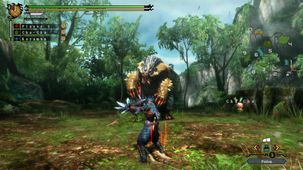 Monster Hunter 3 Tri Wii U Screenshot (4)