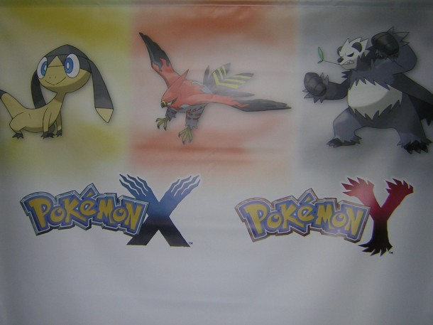 Pokémon X and Y Banner | Media Create