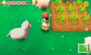 Story of Seasons - Farm2